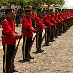 the honour guard