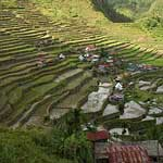 Rice Terraces in North Luzon