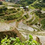 Looking down above Banaue