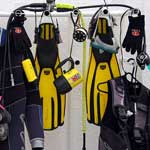 What the well-equipped diver is wearing...